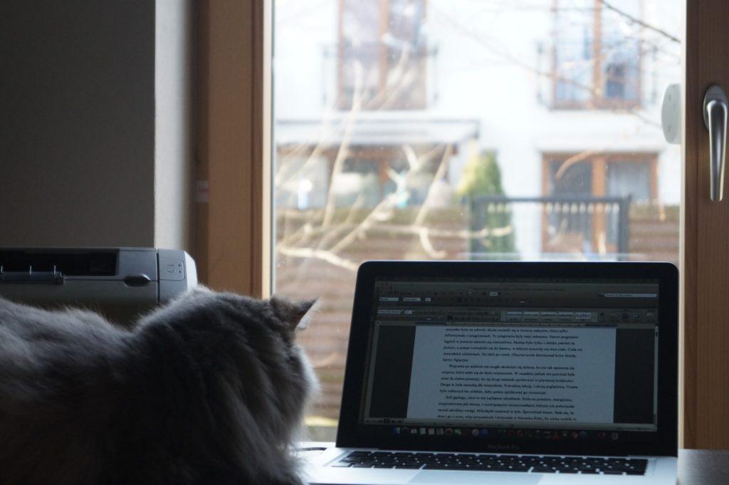zdjęcie Euzebii przy komputerze