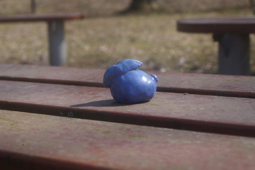 zajączek na ławce w słońcu